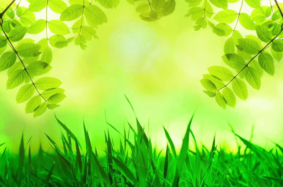 spring-315229_960_720